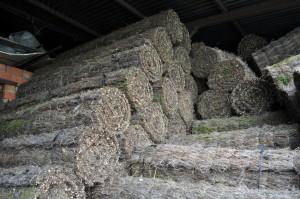 Rollos de brezo natural de Los Alcornocales
