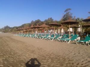 Sombrillas de brezo natural instaladas en playa
