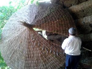 Confeccionando una sombrilla de brezo natural