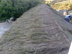 Instalación de cubierta de brezo suelto