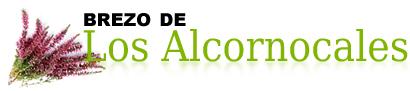 Fábrica de Brezo Los Alcornocales